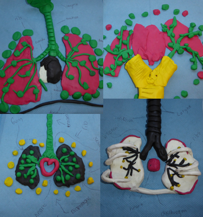 Plasticine Lungs