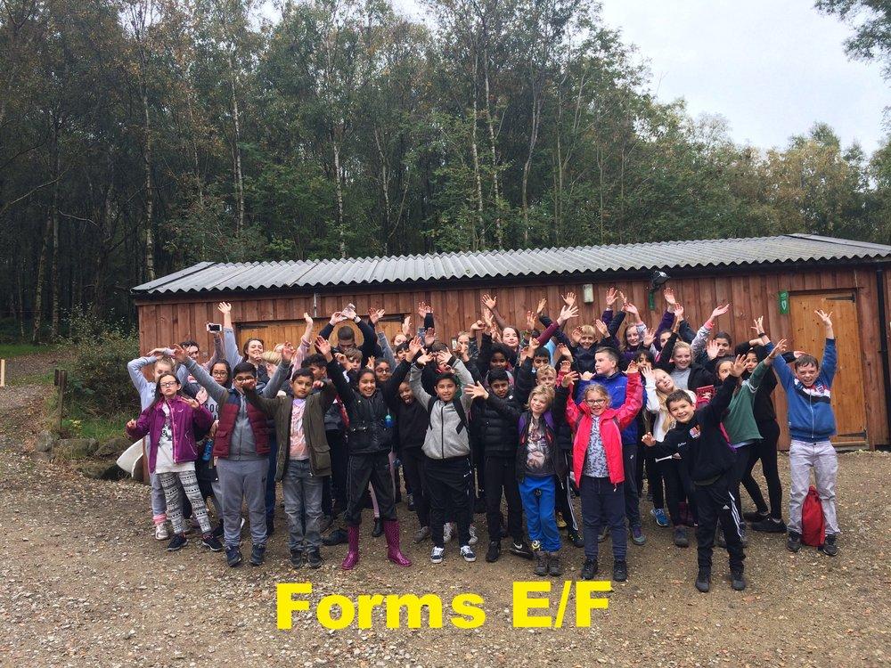 Forms E/F