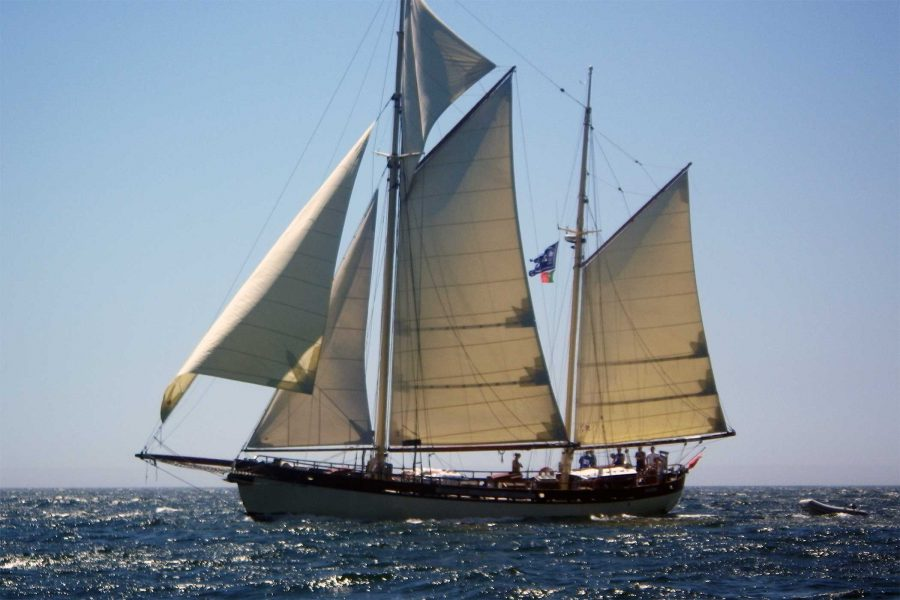 tall-ship-maybe-900x600.jpgtall ship
