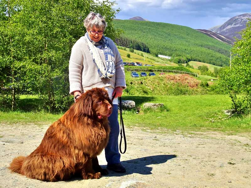 Alan Mabon's good lady and rather large Newfoundland woofer who watched from the shaded 1100 yards....