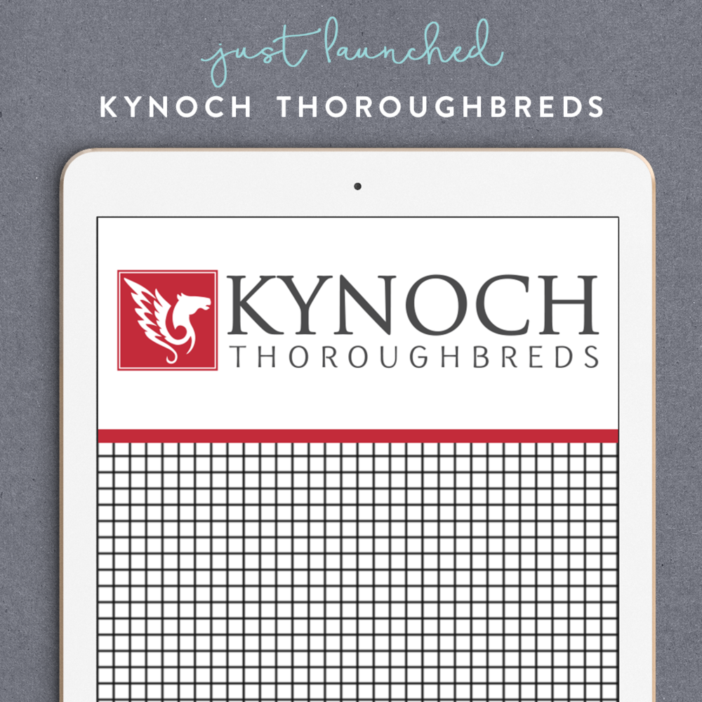 An elegant new brand for Kynoch Thoroughbreds