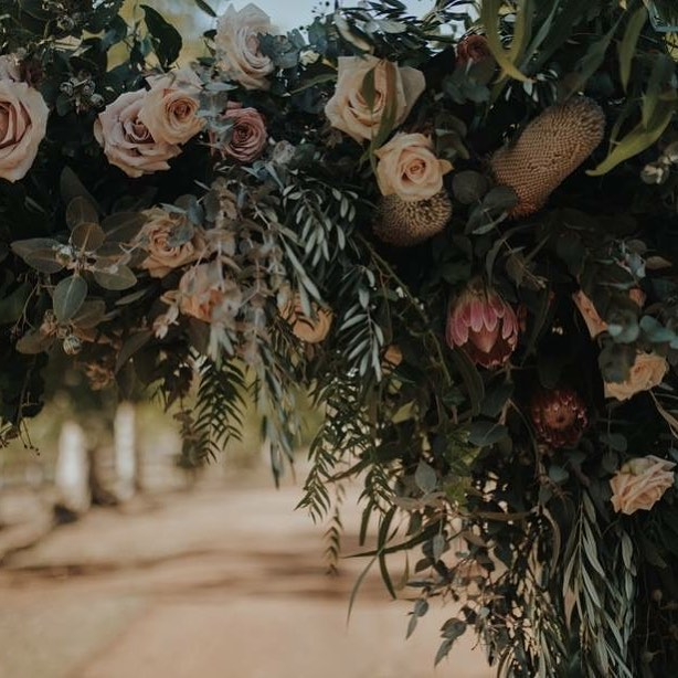 Textural and whimsy... - 📸 @bensowryphoto