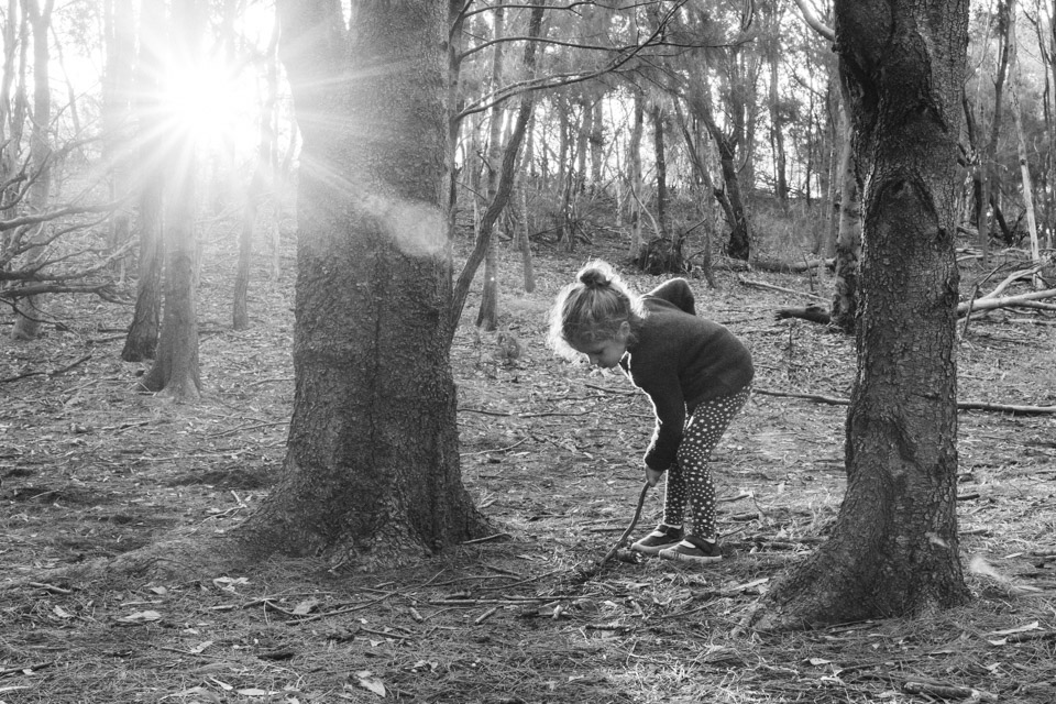 Finding Fairies-8-2.jpg