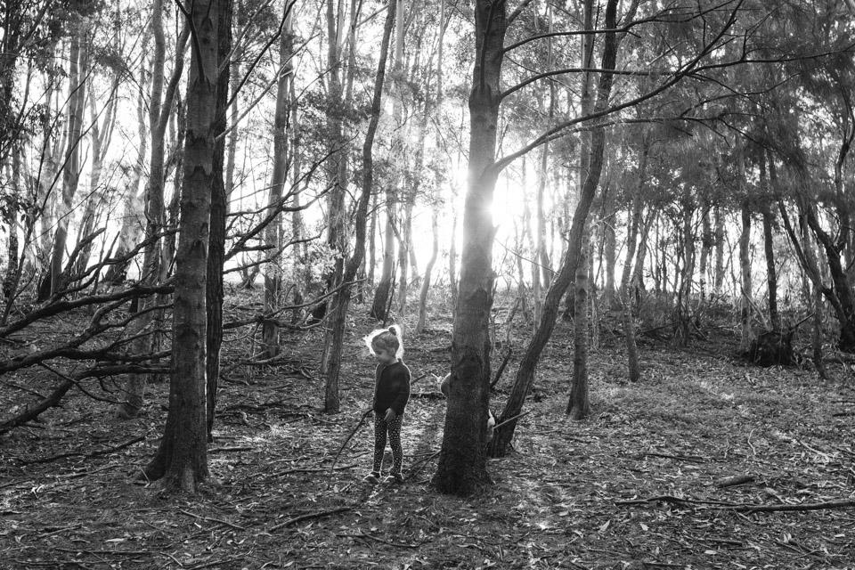 Finding Fairies-1.jpg