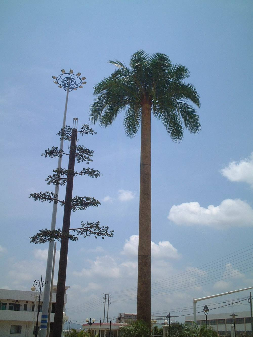 PALM TREE TOWER 011.jpg