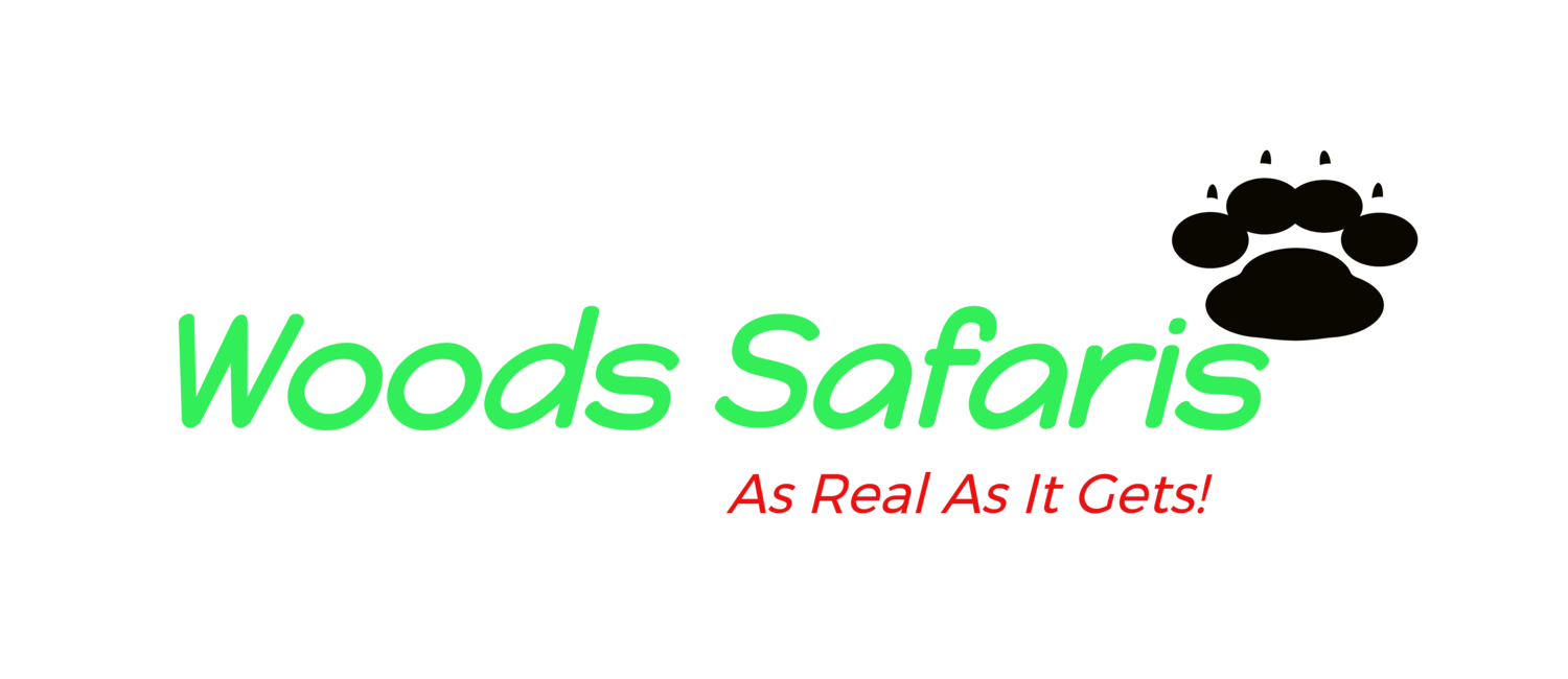 Woods Safaris
