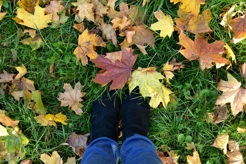 leaves-shoes-autumn