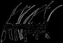Green_School_Bali_Logo.png