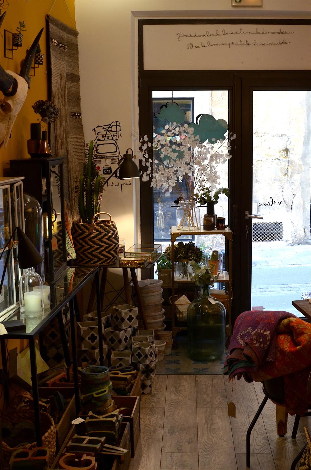 twinky lizzy aix en provence - vingt huit janvier 07.jpg