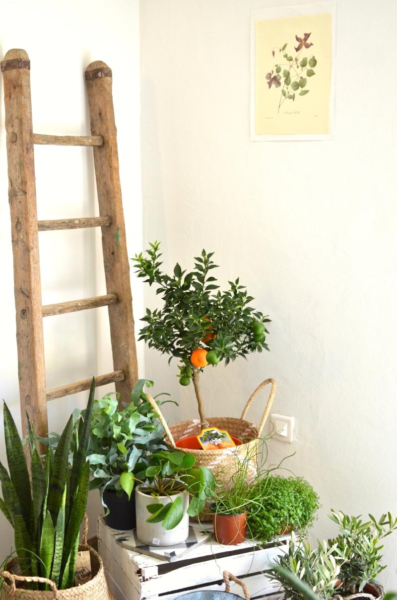 twinky lizzy blog aix en provence - boutique atelier la fabrique detoiles filantes 13.jpg
