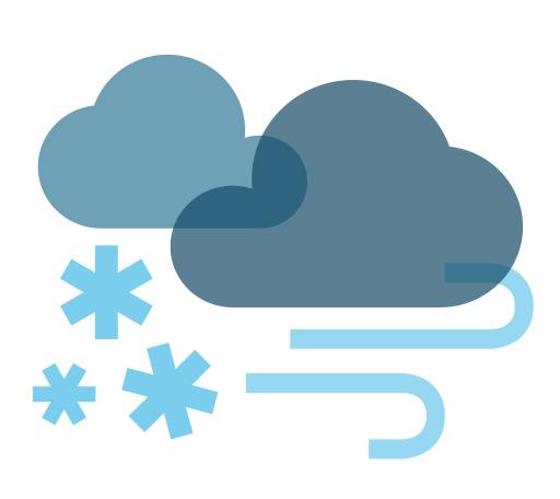 ws-d-blizzard.jpg