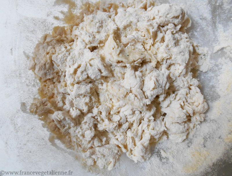 Lasagnes-véganes-préparation-1.jpg