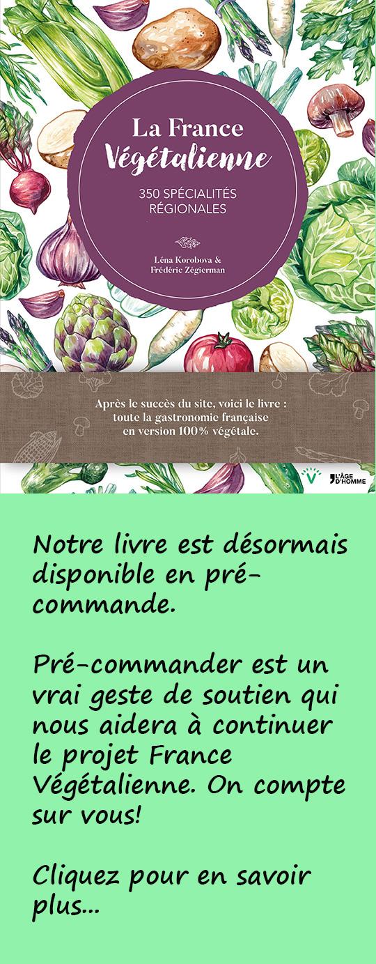 Banière-livre-cuisine-végane-verticale.jpg