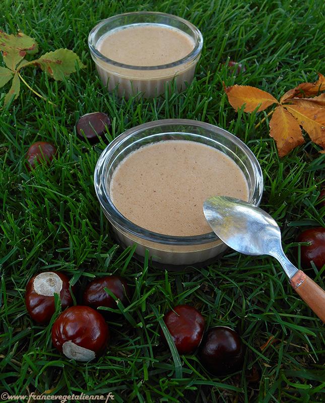 Mousse au marron (recette végane). Attention, les marrons sur la photo ne sont pas comestibles. Si vous souhaitez réaliser une crème de marrons maison, utilisez des châtaignes (avec un côté plat).