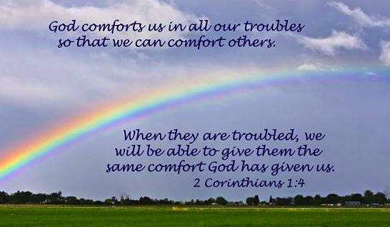 comfort-2