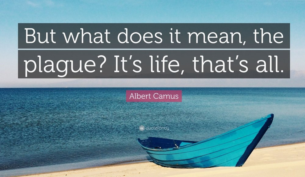 2137885-Albert-Camus-Quote-But-what-does-it-mean-the-plague-It-s-life-that.jpg