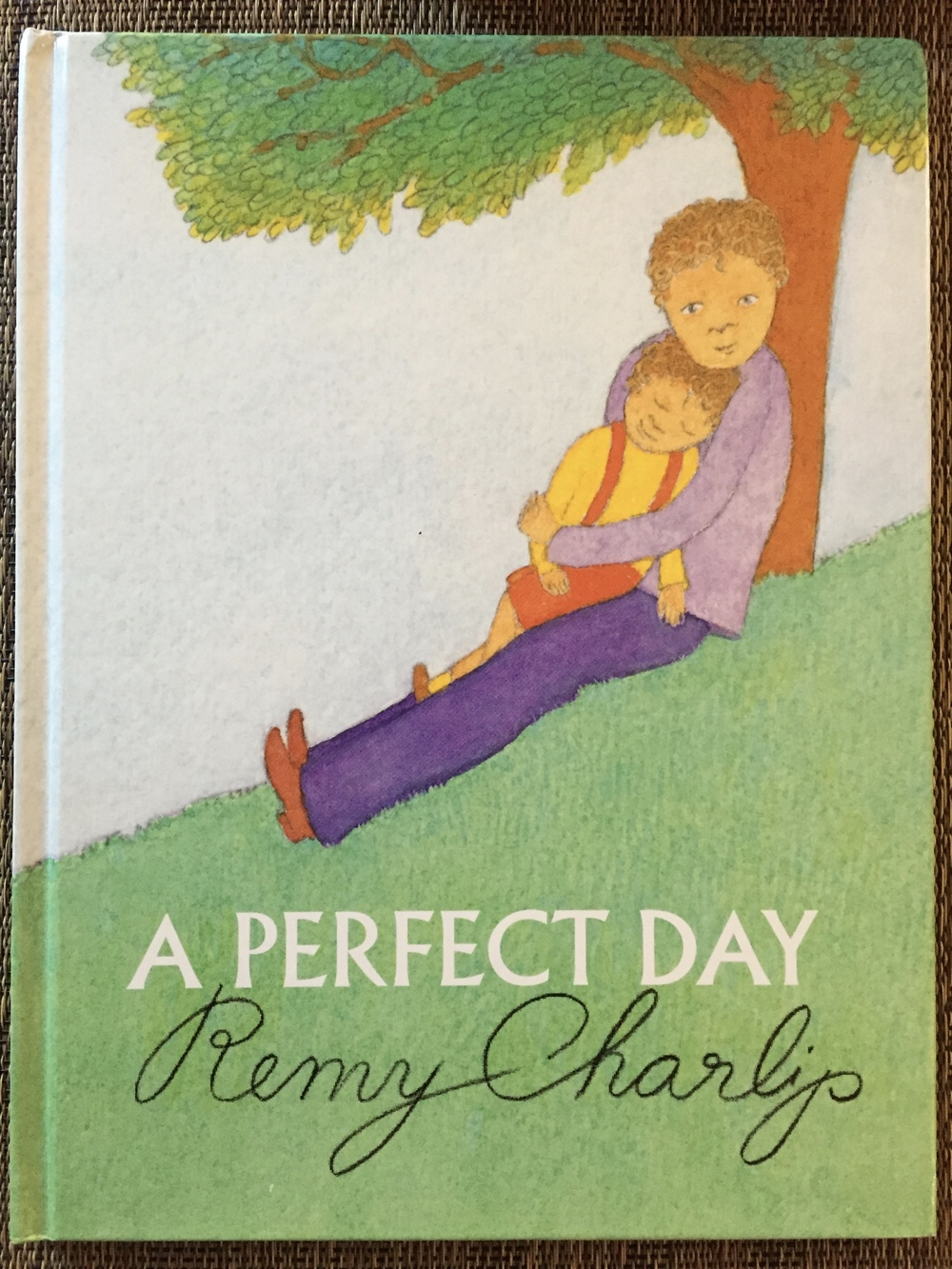 A Perfect Day was Remy's last book. Published in 2007.