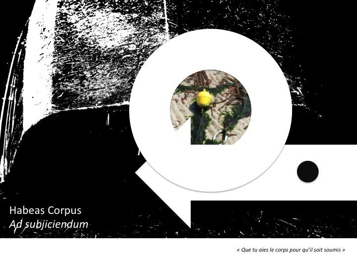 Diapositive71.jpg