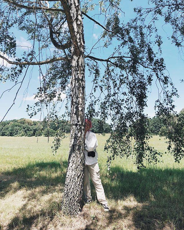 Výprava do Holašovic a úplně #sanepaula za stromem... 🌳🏡🌾