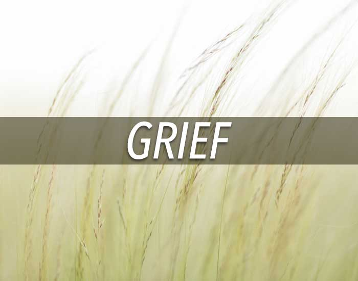 Grief-Finding-Care-Link-Image.jpg