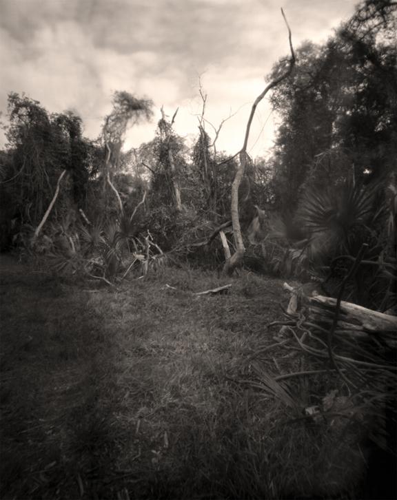 'Skiadaway Island II,' 2012