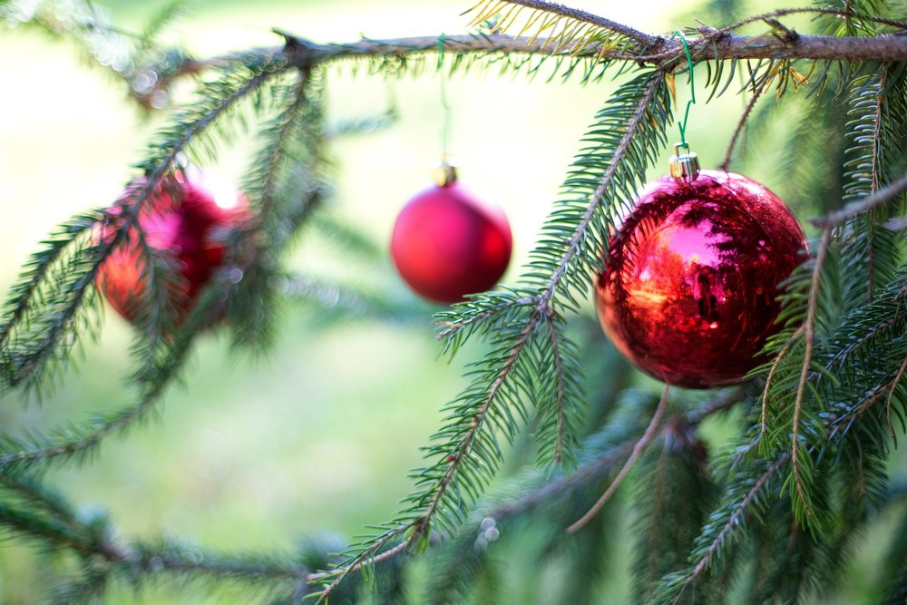 christmas-bulbs-2957820_1920.jpg
