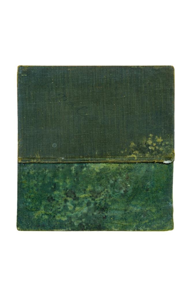 VV_Mateo Zuñiga_Mixta sobre tapa de libro_16 x 15 cm_2015.jpg