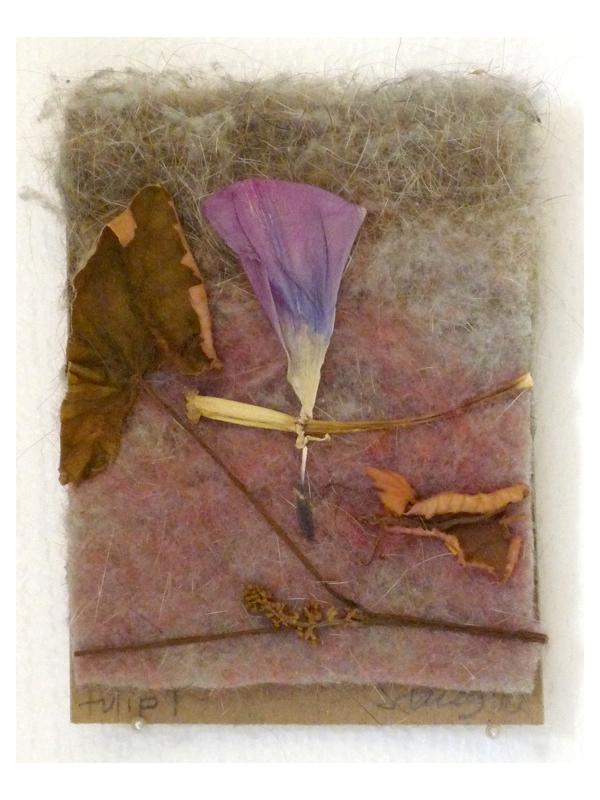 tulip 1 - 2010