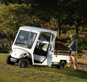 Our Golf Carts — Brewer Sales & Service   Lake Wales, Florida Golf  Golf Cart Hauler on golf card, golf handicap, golf words, golf games, golf tools, golf accessories, golf trolley, golf hitting nets, golf girls, golf players, golf cartoons, golf buggy, golf machine,