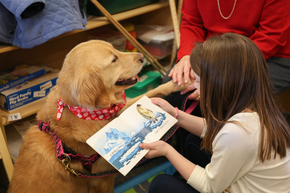 Students from Grace B. Luhrs University Elementary School read to Dotty, a retired breeder from The Seeing Eye. Dotty is a Canine Good Citizen and visits students weekly with her owner Helen Skiba-Powell.