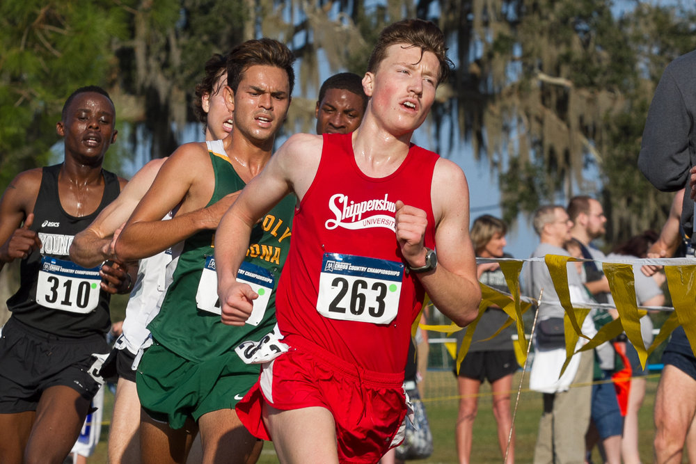 Senior Kieran Sutton earned All-America honors with a 25th-place finish at the NCAA Championships.