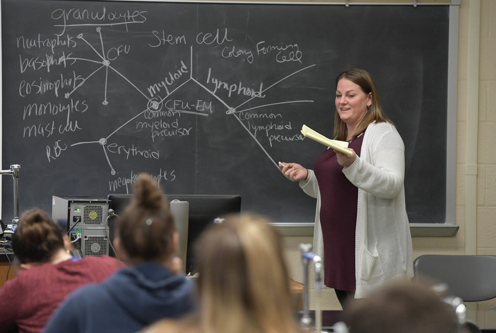 Sheryl (Koziar) Rose '04-'10M now teaches in the program from which she graduated and also works at Chambersburg Hospital.
