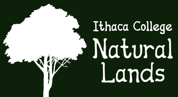 Ithaca College Natural Lands
