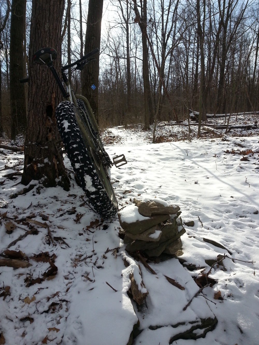 East_Trail_Snow_Fatbike.jpg