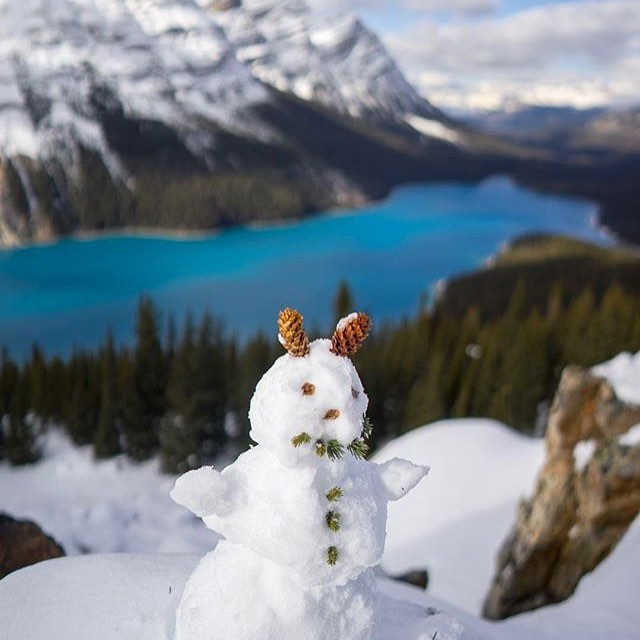 🎼Ohh the weather outside is weather🎼 It's December 1st, meaning Christmas is only 23 days, 2 hours, 22 minutes, 42,41,40... seconds away! 🎄One of Brand Ambassadors, @sinclair_photo, has embraced the season at one of our most treasured spots in @banffnationalpark. #tistheseason #christmas #elfisthebestchristmasmovieever #jkhomealoneisthebestchristmasmovie #doublejkchristmasvacationisthebestchristmasmovieever #apparel #banff #peytolake #banffnational park #lakelouise #yyc #calgary #alberta #bethechange #waterislife #watereddownapparel #changehasarippleeffect #createaripple
