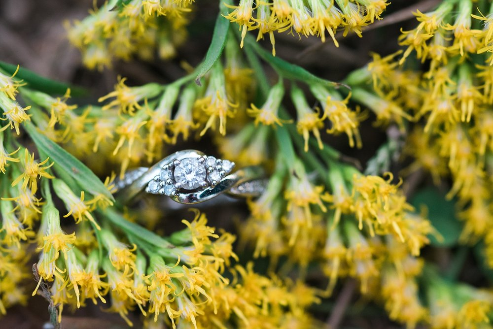 ring-shot-yellow-flowers