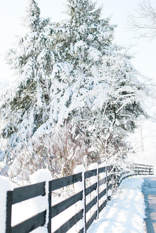snowy-landscape