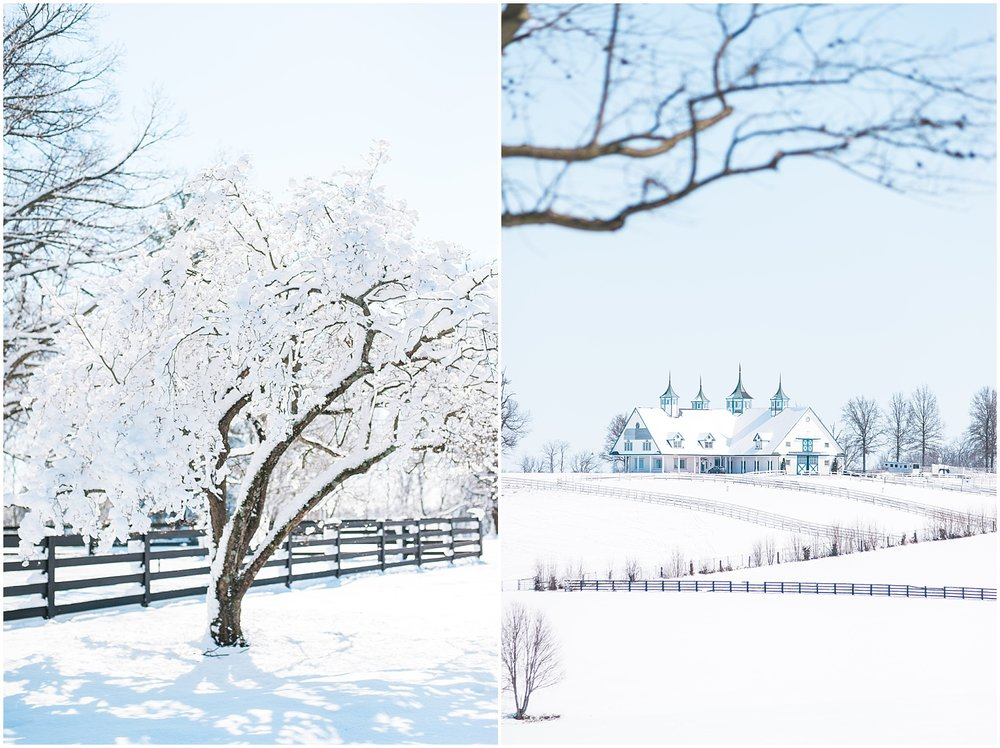 louisville-ky-winter-wedding