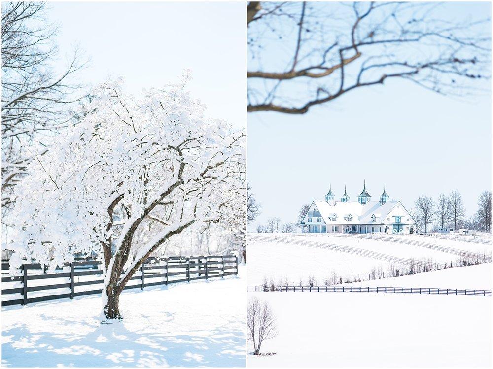 louisville-ky-winter-wedding
