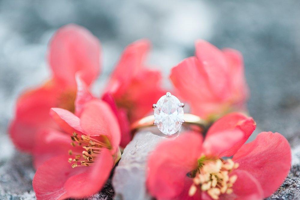 spring-ring-shot