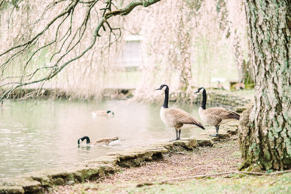 best-places-to-photograph-in-lexington