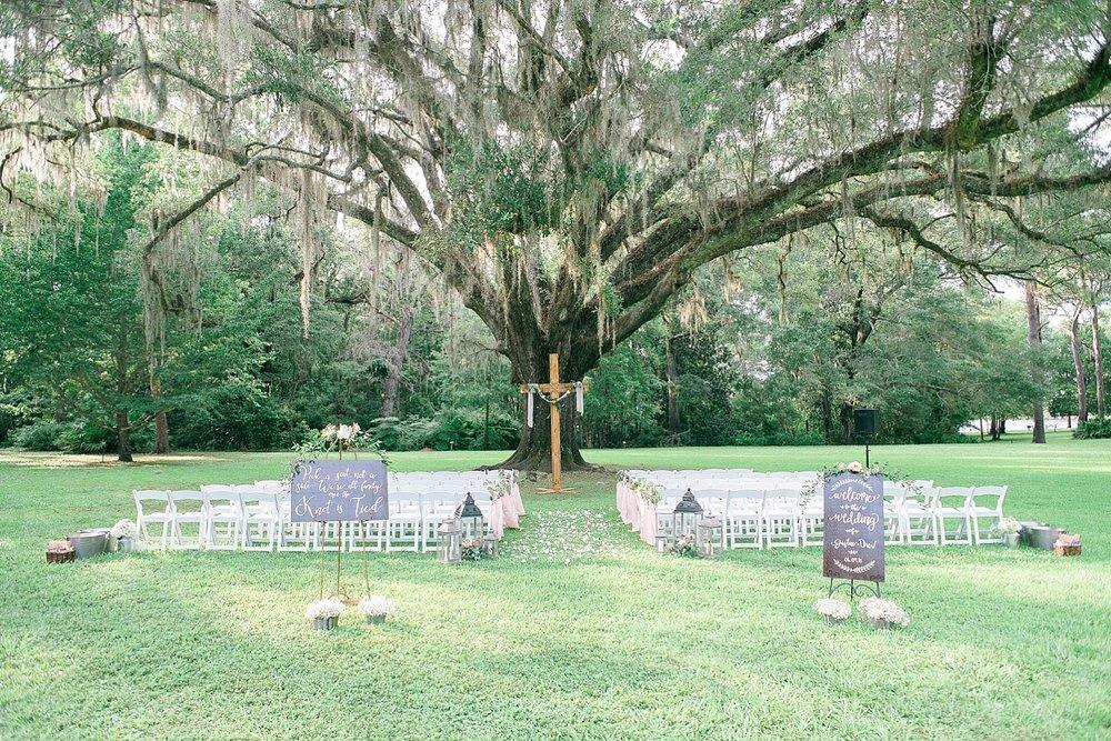 eden-gardens-wedding-tree