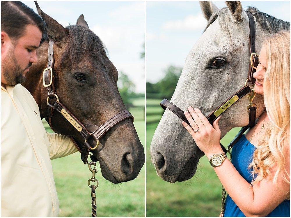 horses-wedding