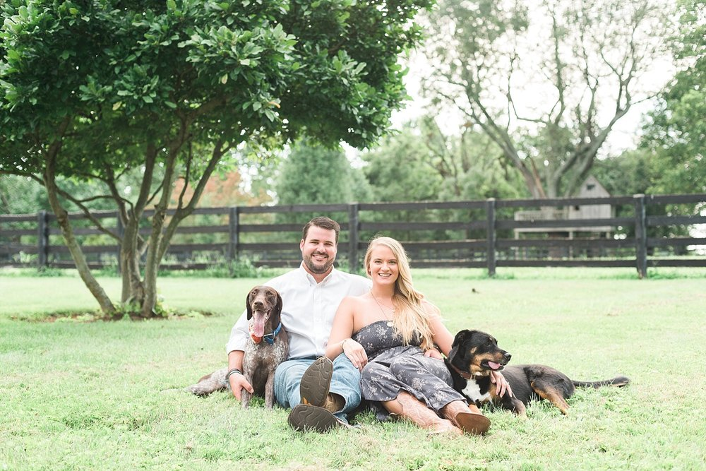 dogs-engagement-photos