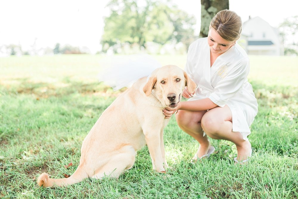 kentucky-wedding-dog