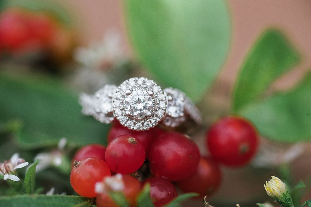 winter-berry-ring-shot