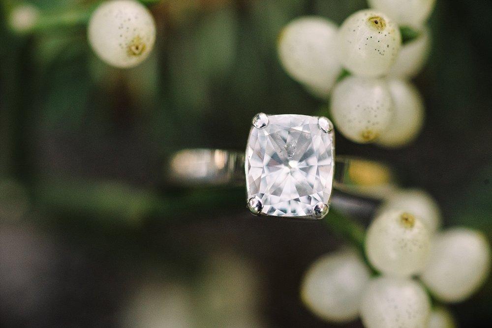 mistletoe-ring-shot