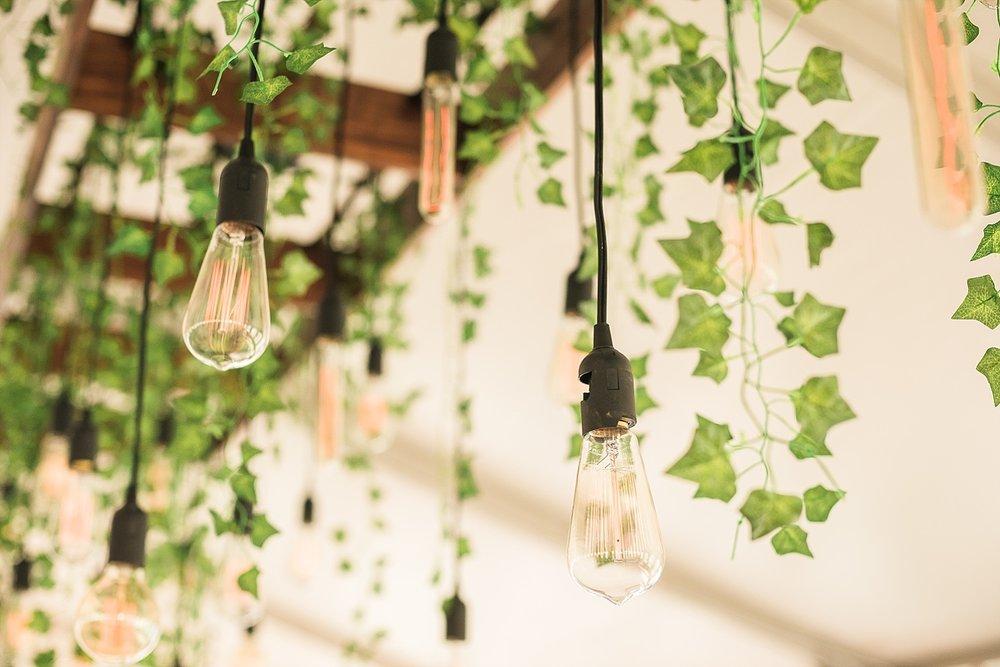 indoor-arbor