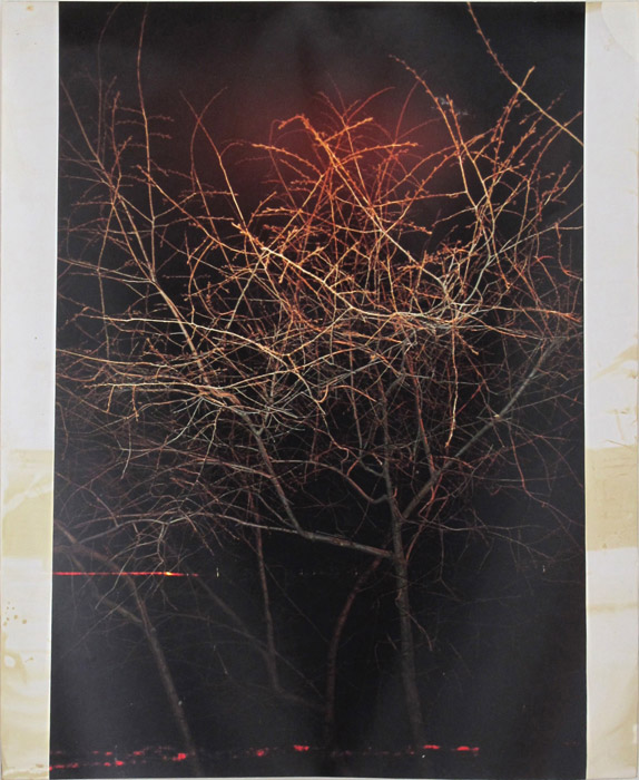 Ryan Foerster,  damaged sunrise,  2005, damaged C-print, 20 x 16 in
