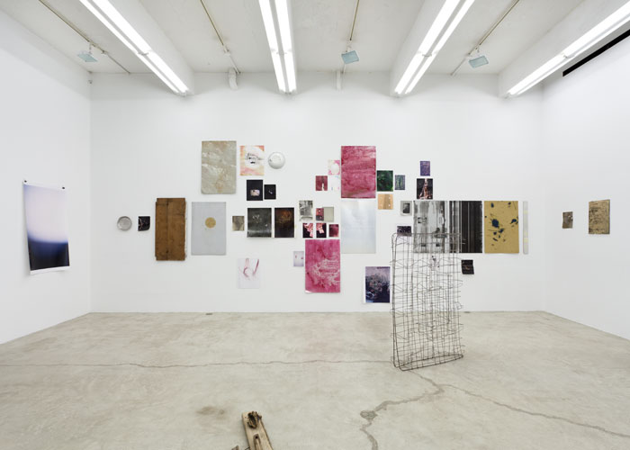 Installation view,  Ryan Foerster , Martos Gallery, New York, 2012